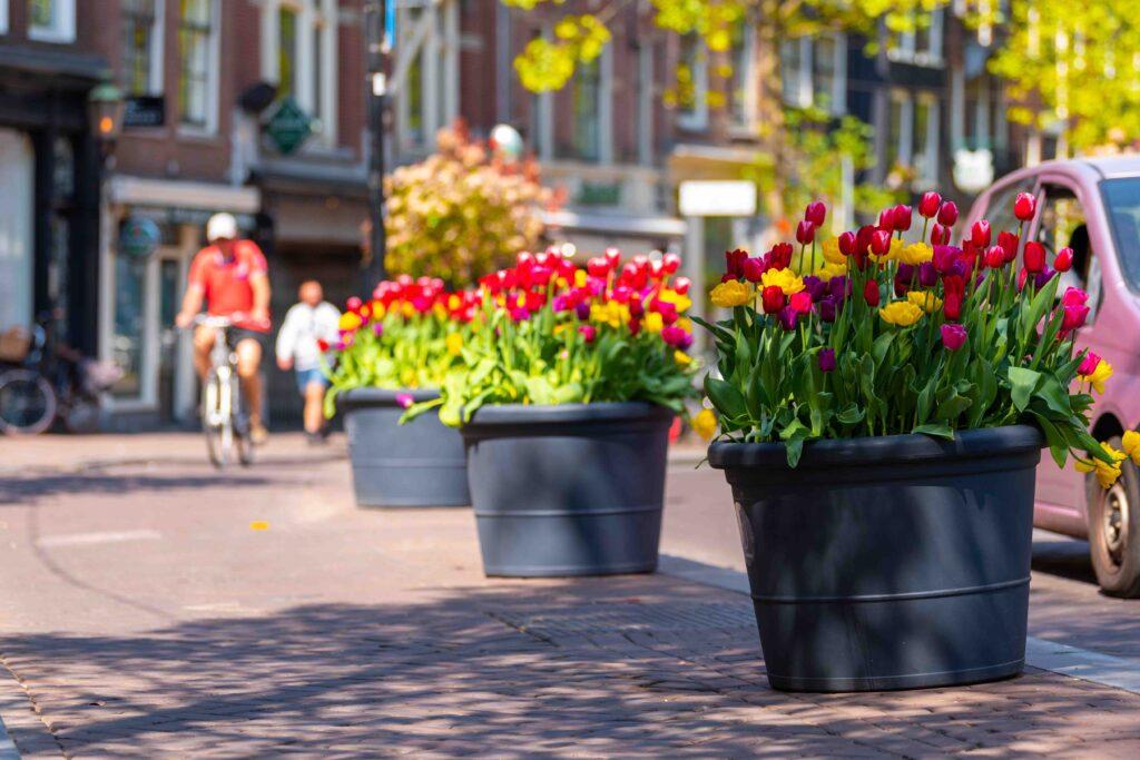 Flower pots along the bike path in Amsterdam.